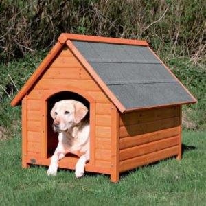 Melhores casas de cachorro